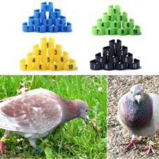Get 8% off on Poultry Leg Bands Bird Pigeon Parrot Chicks Rings 10.5mm 1-100 Numbered 100Pcs