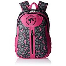 Buy Barbie Nylon 43 cms Pink and Grey Children's Backpack (Age group :6-8 yrs) from Amazon