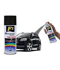 Buy F1 Aerosol Spray Paint (Shiny Black) from Amazon