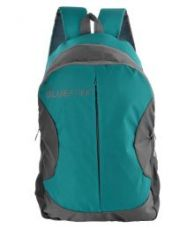 Flat 68% off on The Blue Pink Multicolour Backpack