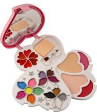 Buy ADS Color Series 14 Eyeshadow, 2 Blusher, 2 Compact Powder,6 Lip Color Makeup Kit from SnapDeal