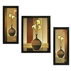 Buy 3 PC Set of Floral Paintings Without Glass 5.2 X 12.5, 9.5 X 12.5, 5.2 X 12.5 inch from Amazon