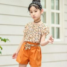 Buy Cute Brown Floral Print Top And Short Set from Hopscotch