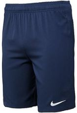 Get 83% off on Nike Polyester Mens' Shorts (Navy Blue)